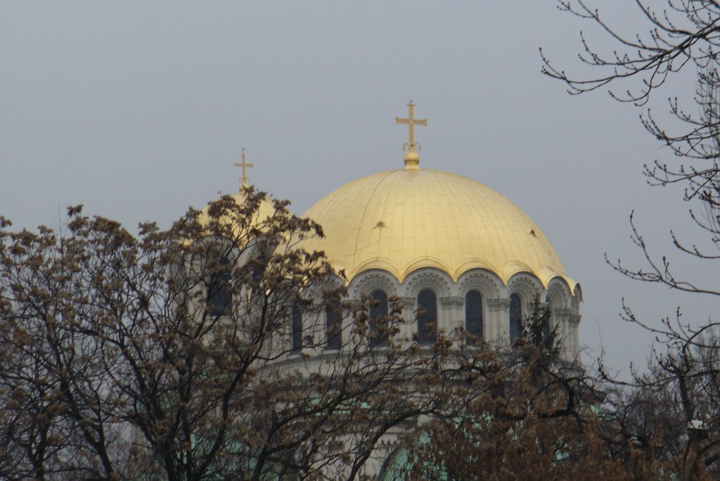The Domes of The Cathedral St. Alexander Nevski