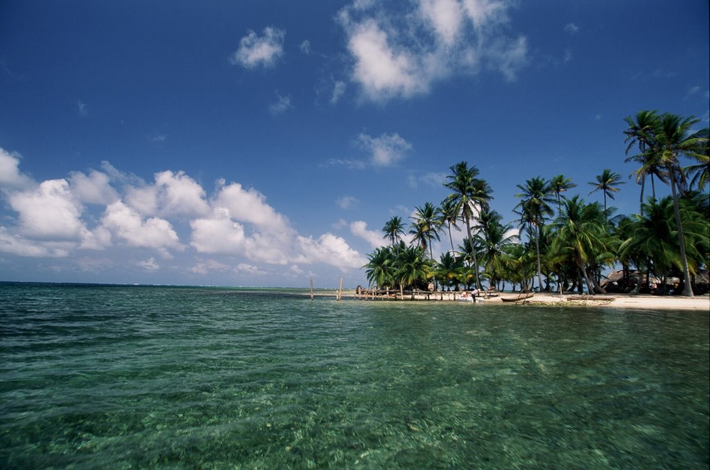 Clear water Palms and blue sky, San Blas