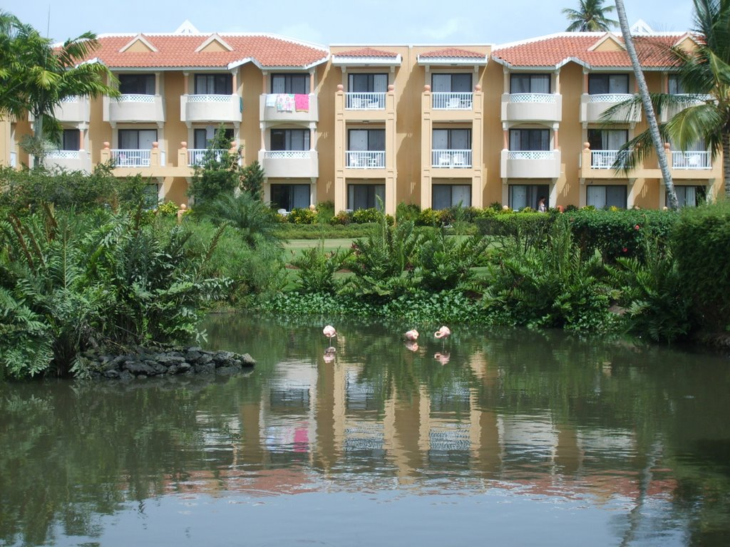 Hotel Dominicus Palace