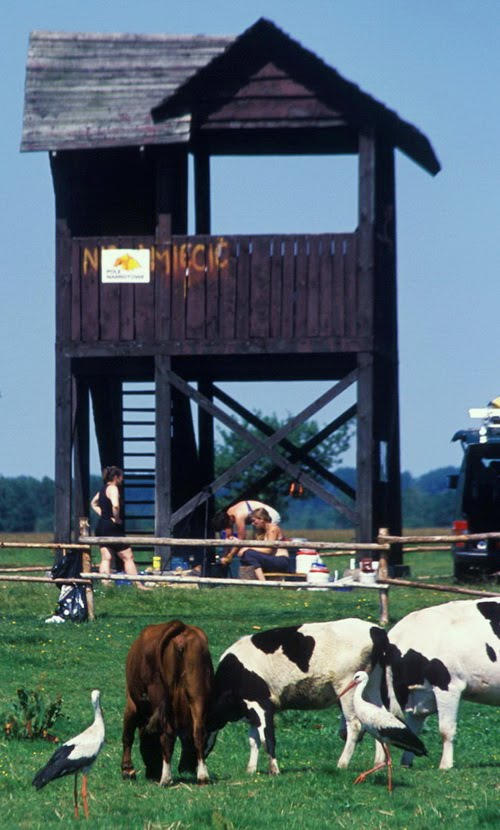 Birdwatching tower at Bialy Grad (Biebrza Marshes).