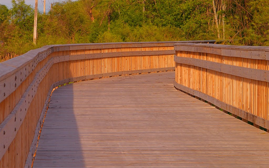 New Boardwalk, Sprigbrook Nature Center, Fridley, Minnesota